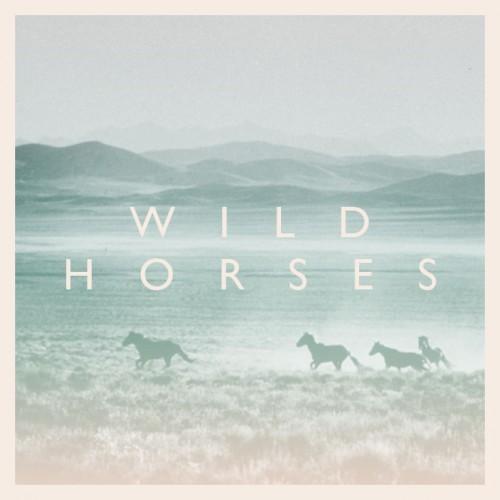 22 wild horses