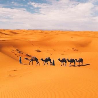 Morocco Mamma