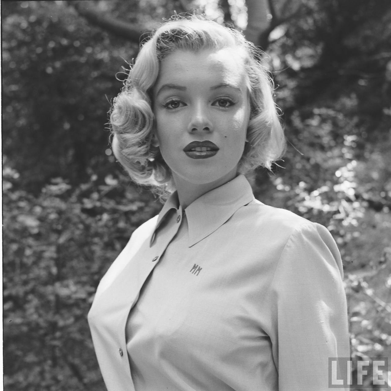 Marilyn in the Wild