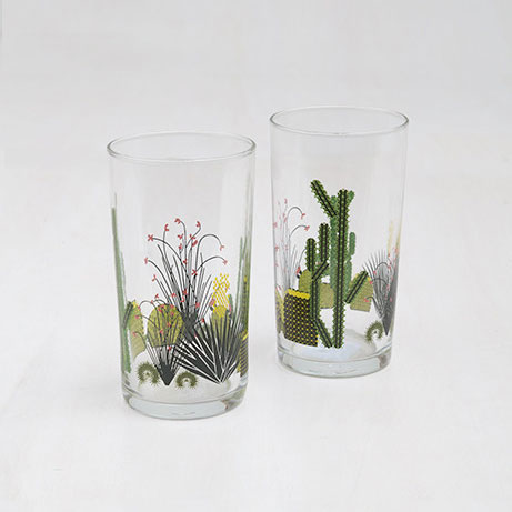 Cacti Glasses